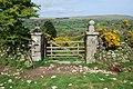 Moorland Gateway - geograph.org.uk - 1290171.jpg