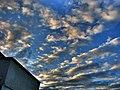 Morning in Dambu Pietros 3 - panoramio.jpg