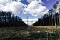 Moscow, power line through Losiny Ostrov forest (18563456413).jpg