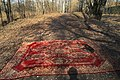 Moscow, red carpet in Losiny Ostrov forest (31014783011).jpg