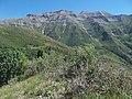 Mount Timpanogos from Big Baldy - panoramio.jpg