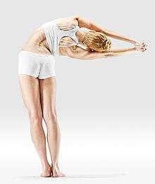 220px Mr yoga sideways pose yoga asanas Liste des exercices et position à pratiquer