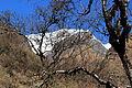 Mt. Macchapucchhere (22).JPG