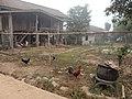 Muang Yai, Wiang Kaen District, Chiang Rai, Thailand - panoramio (2).jpg