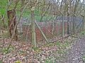 Mystery structure in Tursdale Wood - geograph.org.uk - 155886.jpg