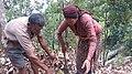 NEPALI PEOPLE.jpg