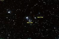 NGC 2185 DSS.jpg