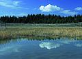 NRCSMT01074 - Montana (4995)(NRCS Photo Gallery).jpg