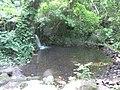 Nacimiento de agua en el parque Leon de Piedra,Tecoluca - panoramio.jpg