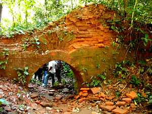 Dooars - Remains of Nalrajar Garh in Chilapata Forest