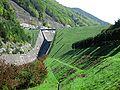 Narai Dam.jpg