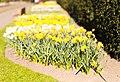 National Botanic Gardens, Dublin (6872742348).jpg