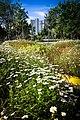 New Mos Eisley - panoramio (40).jpg