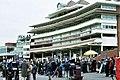 Newbury Racecourse Berkshire Stand.jpg