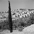 Nieuwbouwwoningen in de vlakte van Jezreel bij Safad (Safed) met op de voorggron, Bestanddeelnr 255-4034.jpg