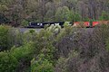 Norfolk Southern Train on Horseshoe Curve (11718412683).jpg