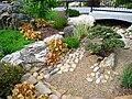 North Carolina Arboretum - bonsai area.JPG