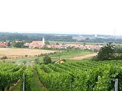 View on the village through the vineyards. Church of Archangel Michael in the back.