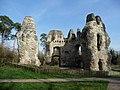 Odiham Castle - geograph.org.uk - 1209114.jpg