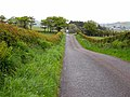 Old Military Road approaching Lochfoot - geograph.org.uk - 1324878.jpg