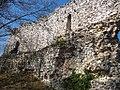 Old town Okić ruins (1270135006).jpg