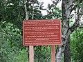 Olin Richardson Tract Public Access Area, Orrington, Maine image 6.jpg