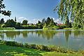 Olomoucký rybník, Litovel, okres Olomouc.jpg