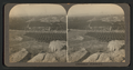 Orange groves, San Francisco, Cal, from Robert N. Dennis collection of stereoscopic views.png