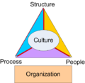 Organization Triangle.png