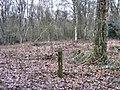Orienteering marker - geograph.org.uk - 1700142.jpg