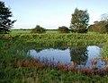 Ottringham Ings - geograph.org.uk - 263421.jpg