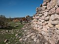 Otxate - Ruinas 06.jpg