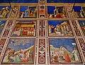 Padova Cappella degli Scrovegni Innen Fresken 4.jpg