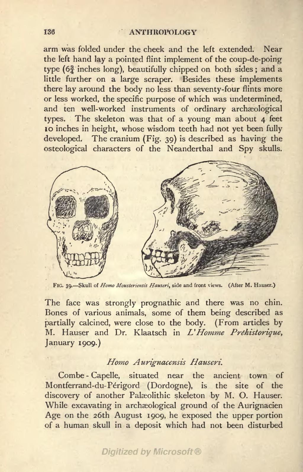 Homo 1909
