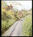 Panama railroad tracks (3607563789).jpg