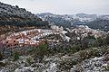 Panoramica nevada-2013.JPG