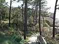 Parc de l'estuaire, Saint-Georges-de-Didonne.JPG