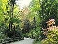 Parco della Villa Pallavicino - Stresa - DSC03040.JPG