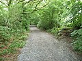 Part of the Knight's Way on Narberth Mountain - geograph.org.uk - 2501605.jpg