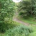 Path - panoramio - Immanuel Giel.jpg