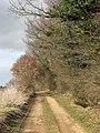 Path to Brick Kiln Road - geograph.org.uk - 1203319.jpg