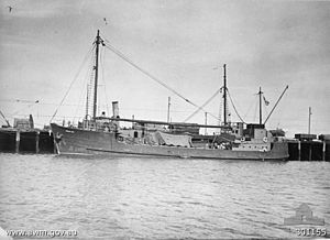 HMAS Patricia Cam - Patricia Cam prior to entering military service