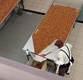 Pecans being packaged.jpg