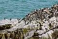 Pembrokeshires Coast National Park, Pembrokeshires, Wales - Explore - Flickr - cattan2011.jpg
