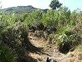 Penya del Moro - panoramio.jpg