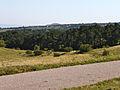 Perchtoldsdorfer Heide I.jpg