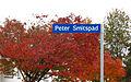 Peter Smitspad.jpg
