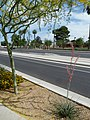 Phoenix, AZ, View SE, Jefferson St., Eastlake Park, 2012 - panoramio.jpg