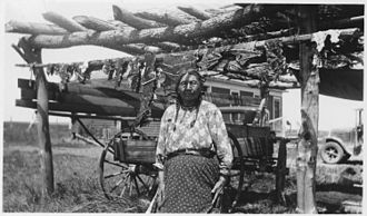 Cheyenne River Indian Reservation - Woman drying food on an outdoor rack in the 1930s
