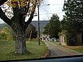 Pine Brook.jpg